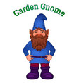 cartoon garden gnome vector image