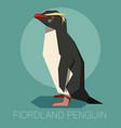 flat fiordland penguin vector image vector image