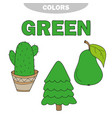 green learn the color education set vector image