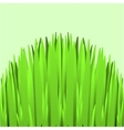 Hill Green Grass vector image