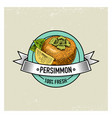 persimmon vintage hand drawn fresh fruits vector image