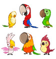 set six cute and funny cartoon parrots vector image vector image