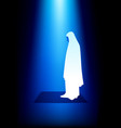 simple graphic of a muslim woman praying vector image