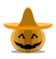 halloween pumpkin with a mexican hat vector image