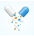 Medical Capsule Open vector image