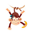 monkey funny alphabet animal vector image vector image