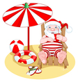 Santa Claus on the Beach vector image vector image