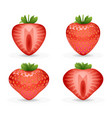 3d realistic fruit design strawberry vector image