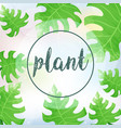 background template with green leaves vector image