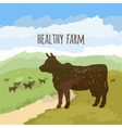 Cow On The Meadow vector image vector image