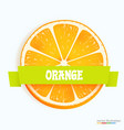 fresh orange slice with stripe vector image vector image
