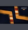 luxurious premium dark navy abstract background vector image vector image