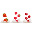 set with berry and milk vector image vector image
