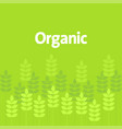 simple graphic of green leaves and plant vector image vector image