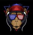 monkey america vector image vector image