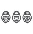 monochrome set three gorilla heads vector image