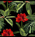seamless pattern red lilies flowers and tropical vector image vector image
