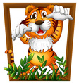 Tiger and frame vector image vector image