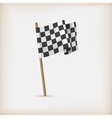 Realistic Checkered Racing Flag vector image