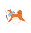 cute akita inu carrying leash adorable japanese vector image vector image
