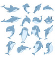 dolphin icons set cartoon style vector image