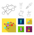 isolated object of genetic and plant icon set of vector image