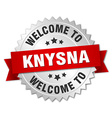 Knysna 3d silver badge with red ribbon vector image vector image
