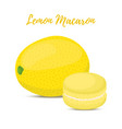 lemon macaron with meringue cream vector image vector image