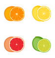 set citrus fruits orange lemon grapefruit vector image vector image
