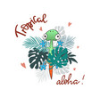 tropical summer slogan print vector image vector image