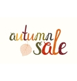 Autumn sale inscription with birch leaf vector image