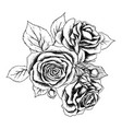 beautiful monochrome black and white bouquet rose vector image vector image