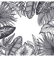 frame with hand drawn tropical flowers vector image