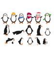 penguin icons set cartoon style vector image