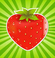 strawberry and sunburst vector image vector image