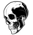 the image of the evil skull vector image vector image