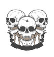 triple skull halloween vector image