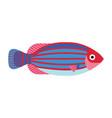 tropical funny aquarium fish icon in flat vector image vector image
