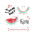 tropical summer slogan print watermelon vector image vector image