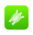 turtle icon digital green vector image