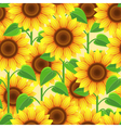 Vintage seamless pattern with flowers sunflowers vector image