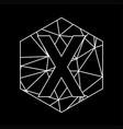 x geometric triangle blockchain font vector image vector image