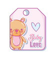 baby love tag