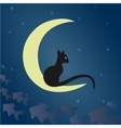 Black cat on the moon vector image vector image