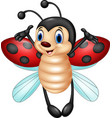 cartoon ladybug flying isolated on white backgroun vector image vector image