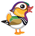 cartoon mandarin duck vector image vector image