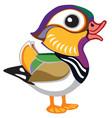 cartoon mandarin duck vector image vector image