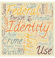 case law identity theft text background wordcloud vector image vector image