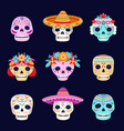 dead day skulls mexican skeleton skull wearing vector image
