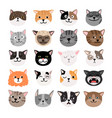 funny cats face emtions vector image